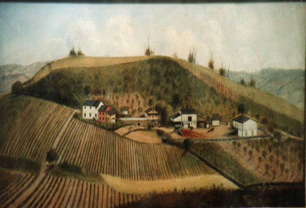 Oil Painting of farm against hill with vineyard in foreground